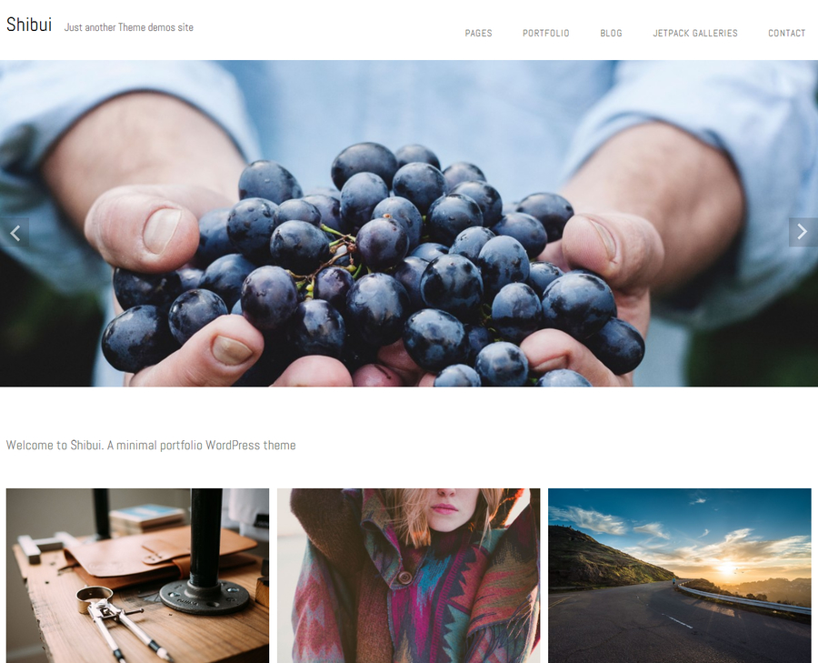 shibui-free-portfolio-wordpress-theme-4