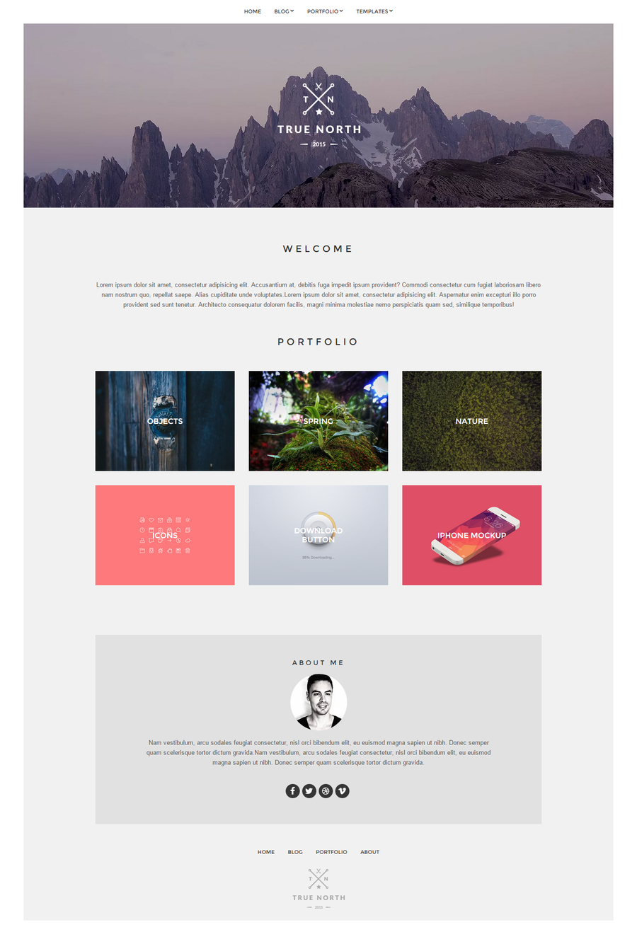 true-north-free-portfolio-wordpress-theme