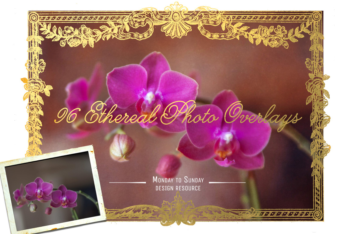 96-Ethereal-Overlays-Photo-Pretties