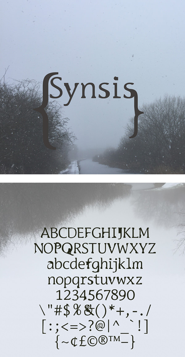 Synsis