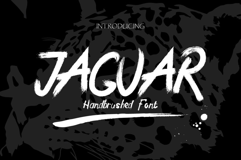 jaguar-typeface-swashes-2