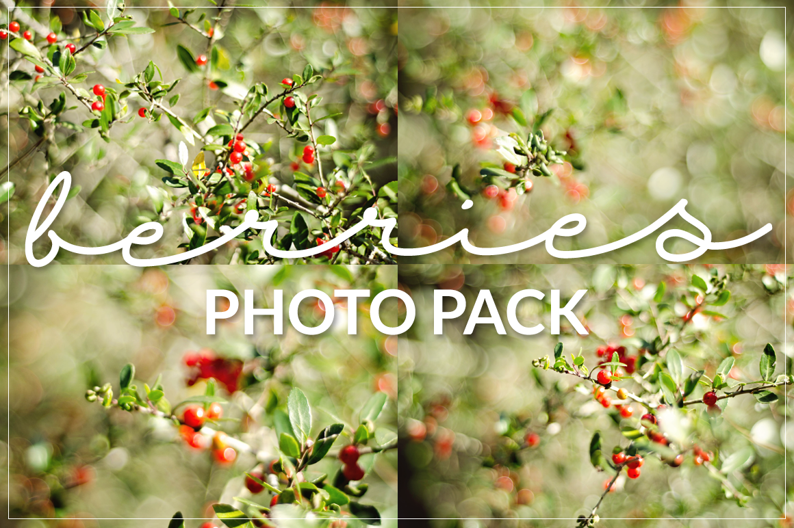 Berries-Photo-Pack