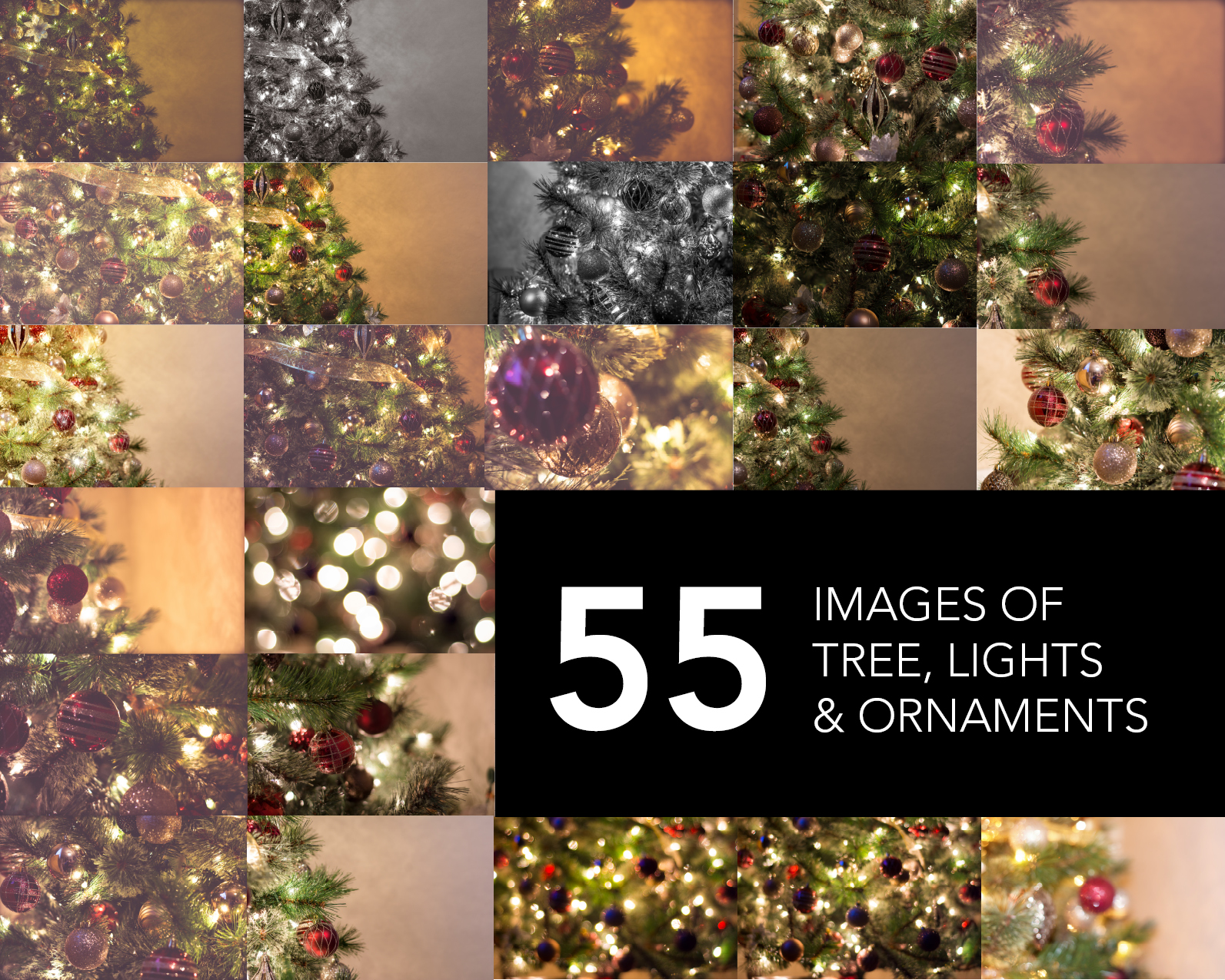 Christmas-Tree-Photo-Bundle