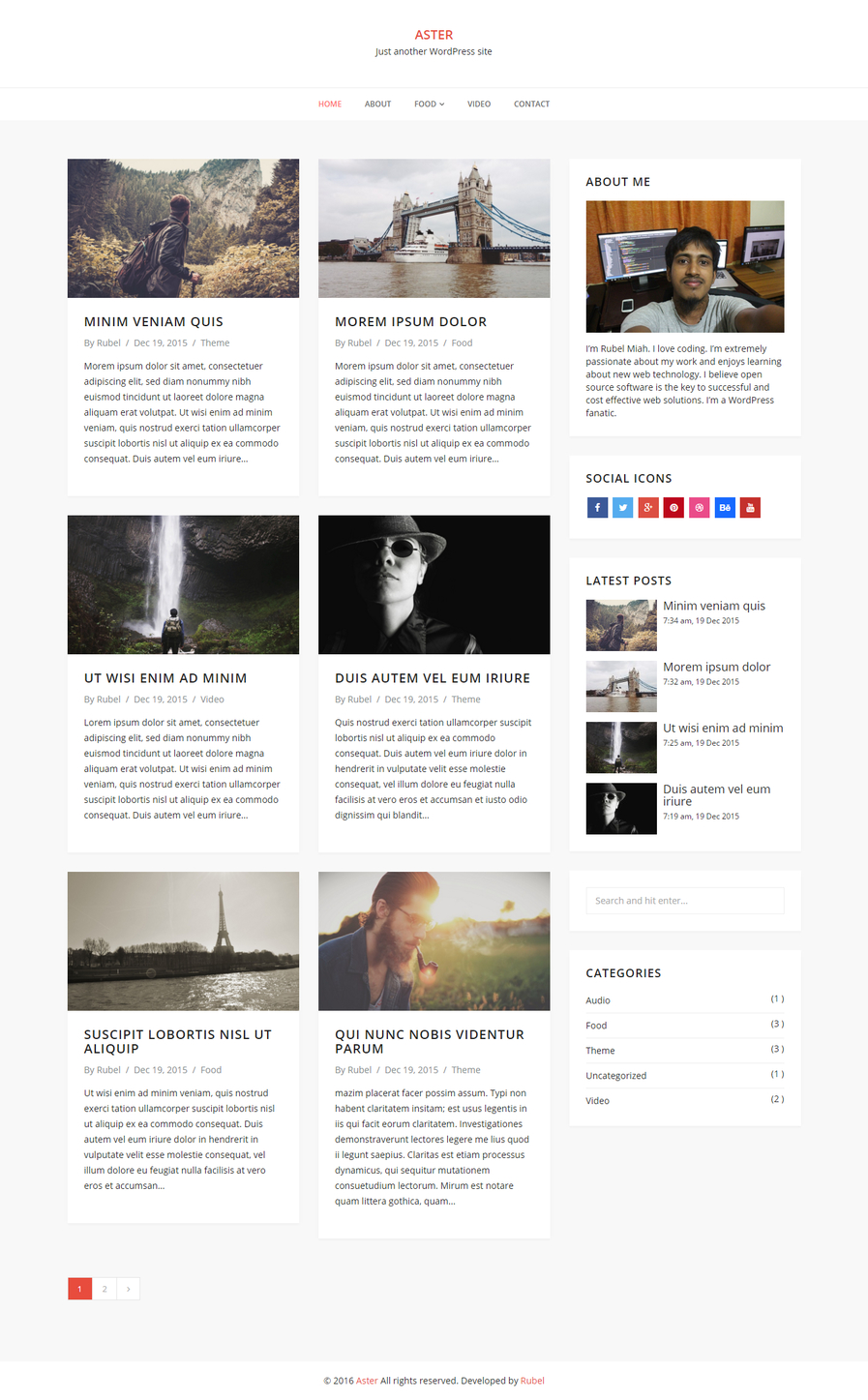 aster-free-blog-wordpress-theme