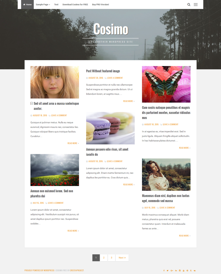 cosimo-free-blog-wordpress-theme