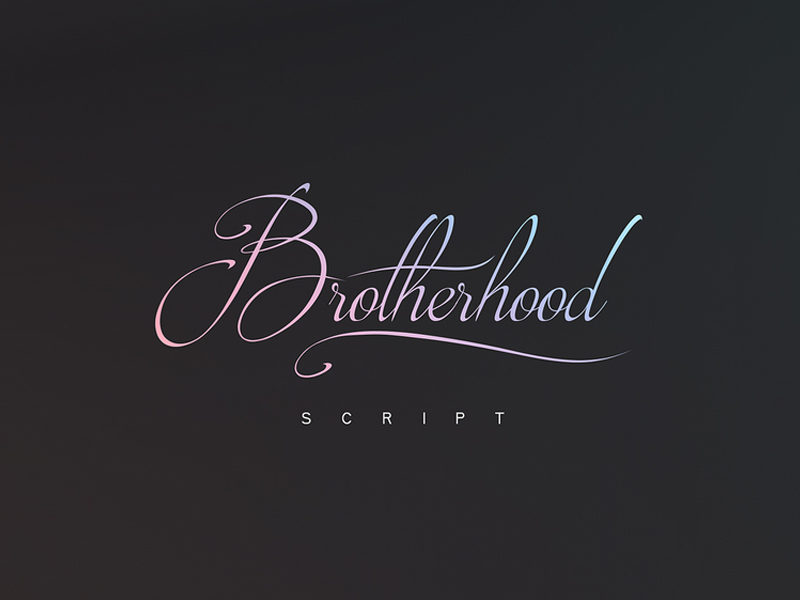 brotherhood-script