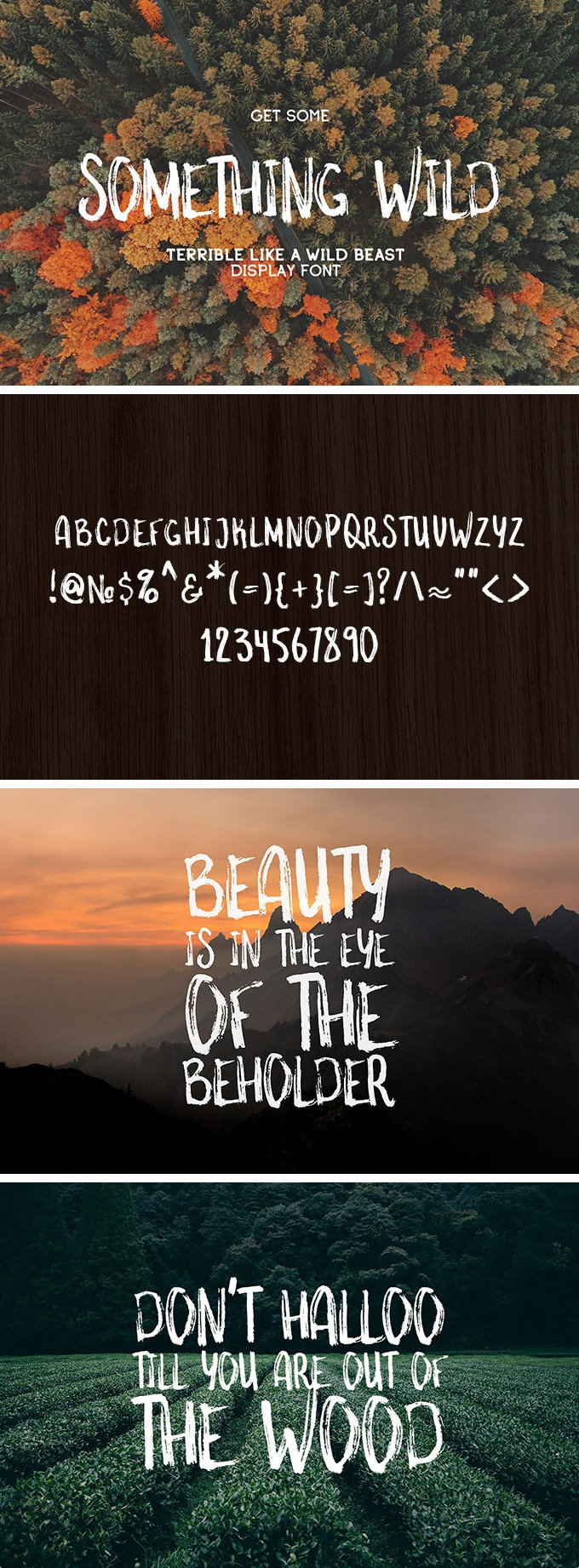 Something-Wild-Free-Font