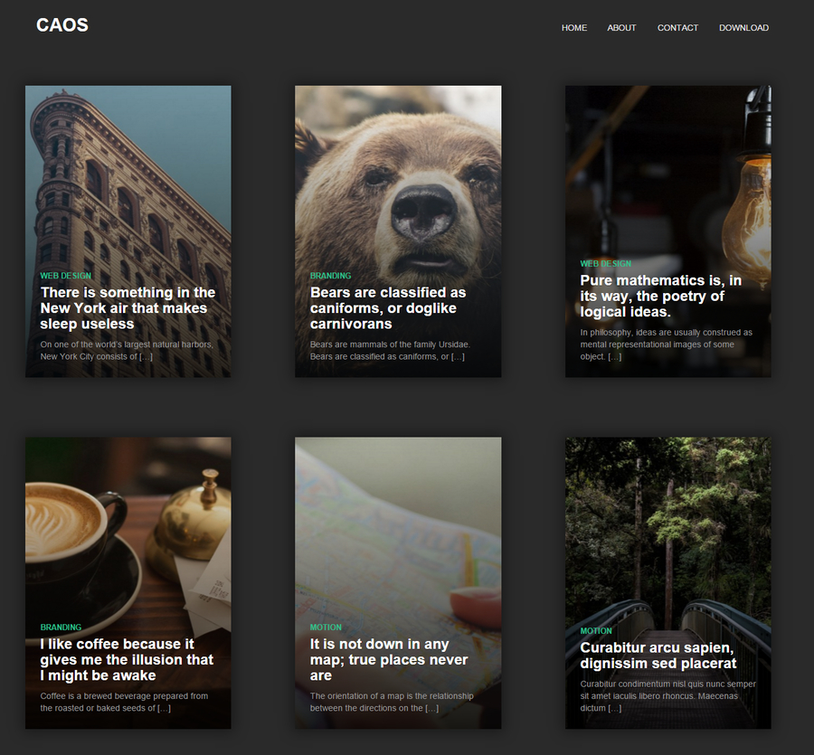 caos-free-wordpress-blog-theme-1