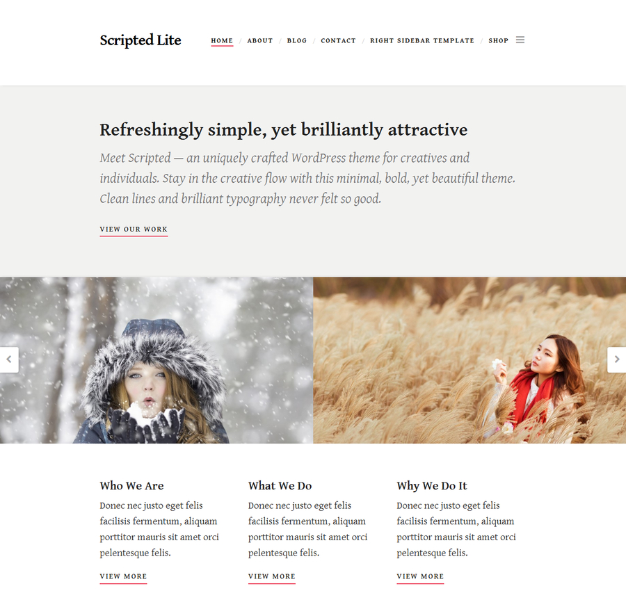 scripted-lite-free-blogging-wordpress-theme-1