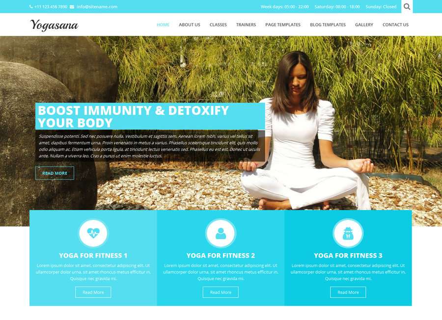 yogi-lite-free-wordpress-theme-1