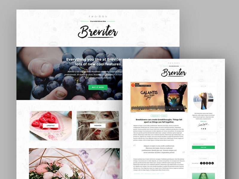 Breviter-WP-Blog-PSD-Templates