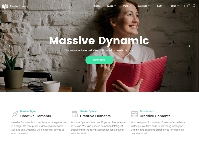 massive-dynamic-wordpress-website-builder-1