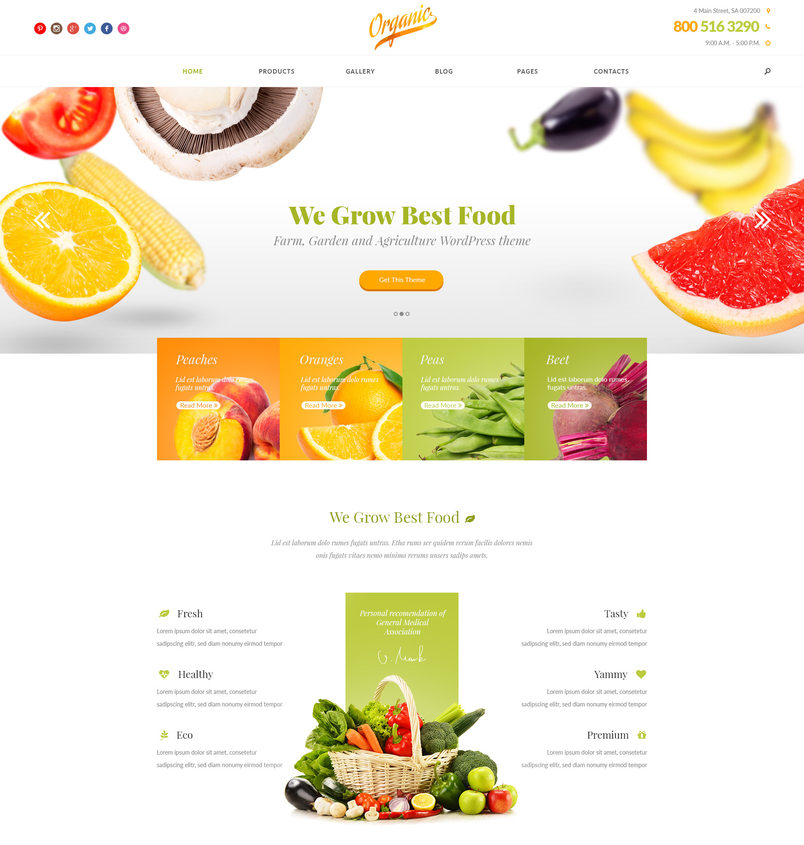 organic-farm-garden-and-agriculture-psd-template-1