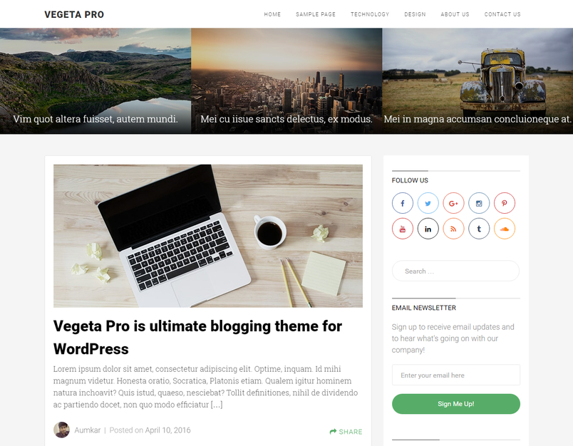 vegeta-pro-blog-wordpress=theme-1