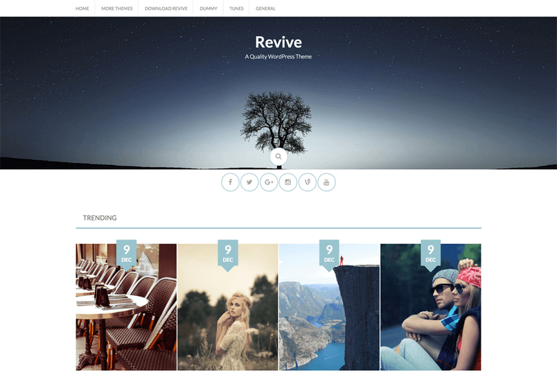 revive-free-wordpress-theme-1