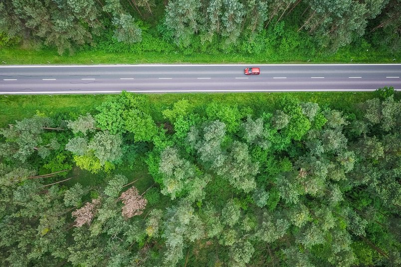 aerial-and-symmetric-view-of-a-road-in-the-woods-2