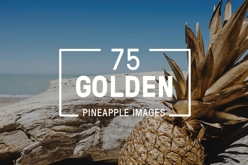 golden-pineapple-images-bundle-2
