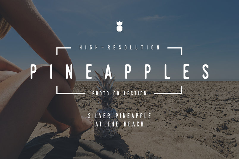 silver-pineapple-collection-2