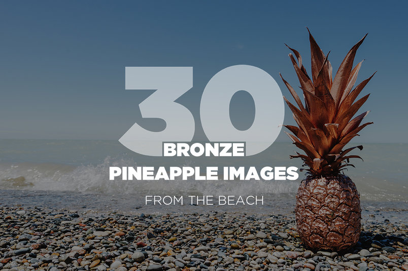 30-bronze-pineapple-images-2