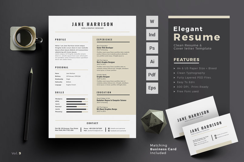 professional-resume-template-2