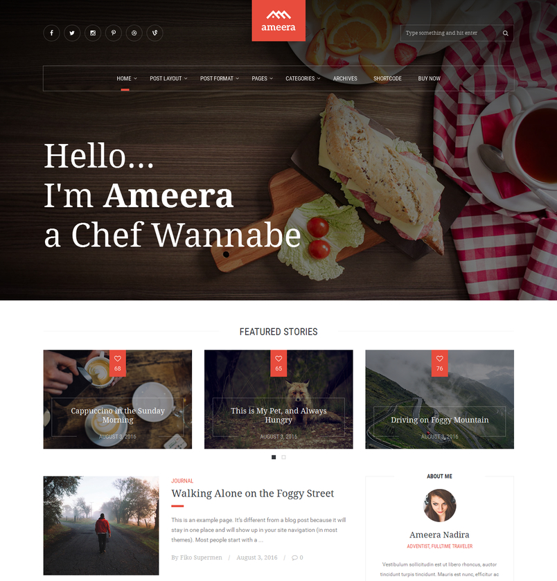 ameera-clean-and-minimal-wordpress-blogging-theme-2