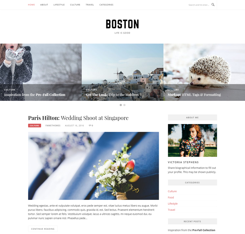 boston-free-blog-wordpress-theme-3