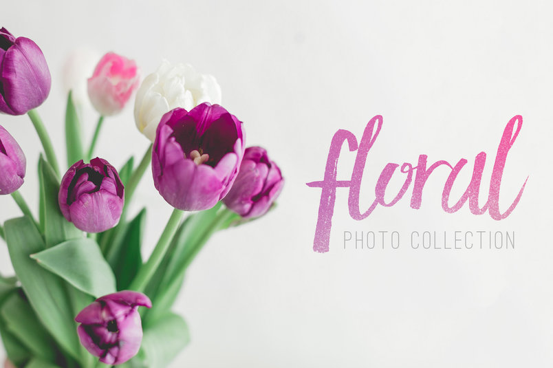 floral-flowers-on-white-photo-pack-2