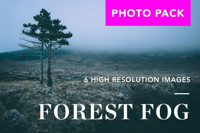 forest-fog-photo-pack-2