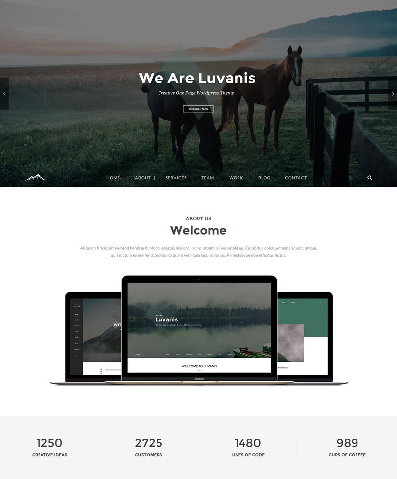 luvanis-creative-one-page-wordpress-theme-2