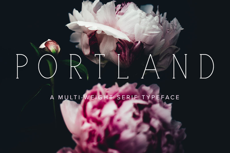portland-serif-multi-weight-2