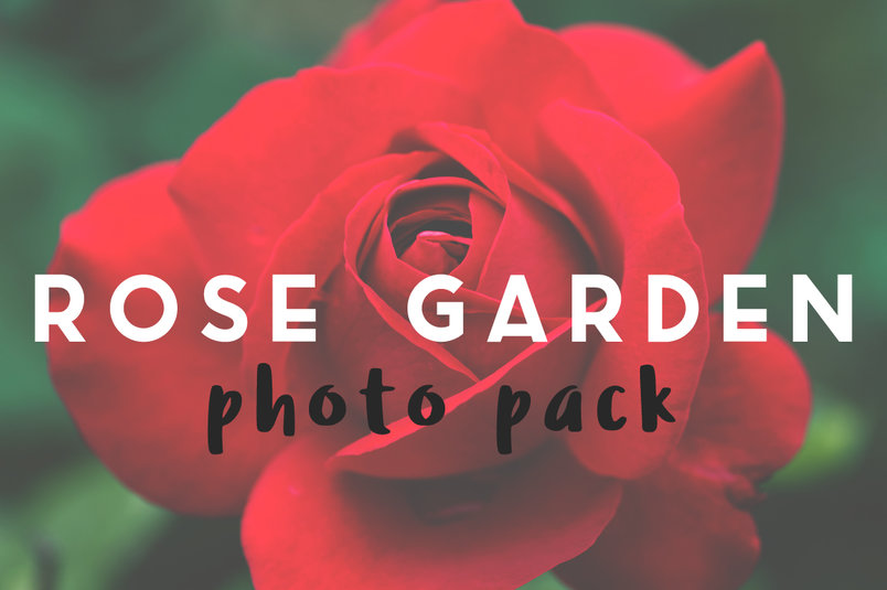 rose-garden-photo-pack-2