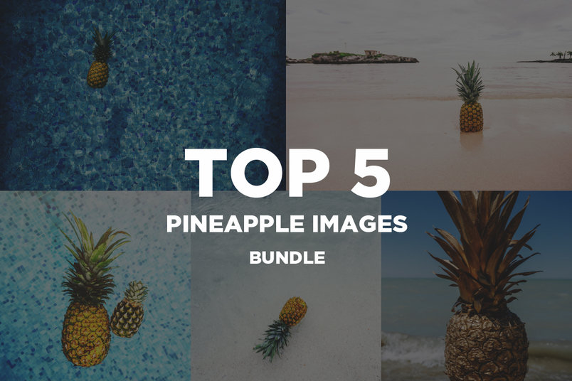 top-5-pineapple-image-bundle-2