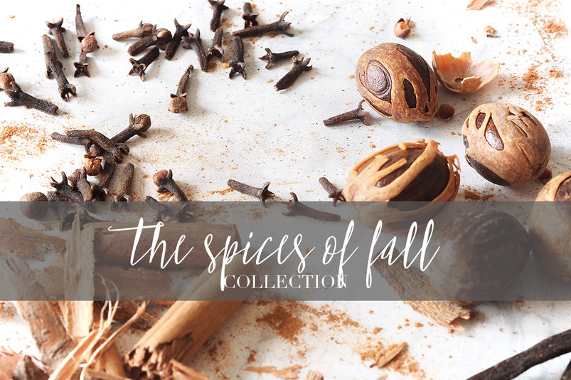22-fall-spices-photo-bundle-2