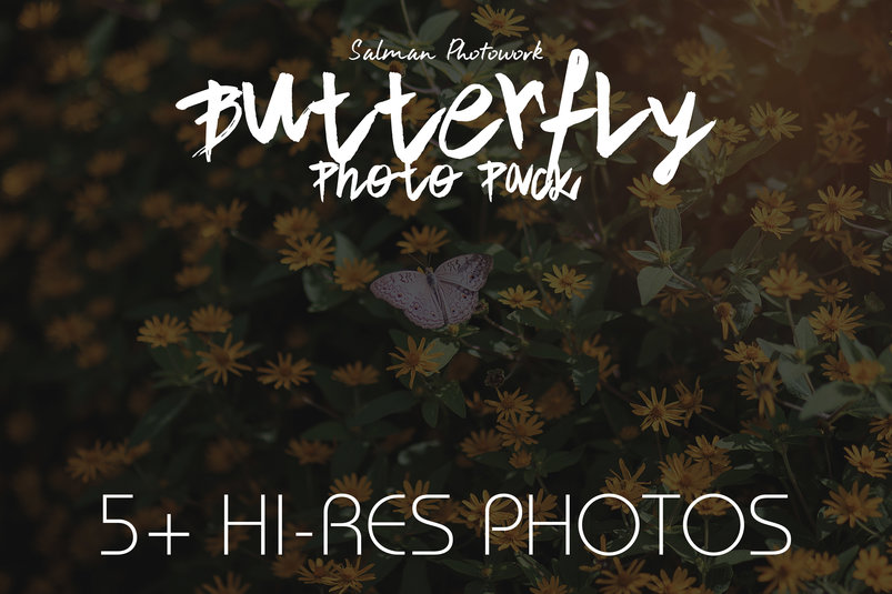 butterfly-photo-pack-2