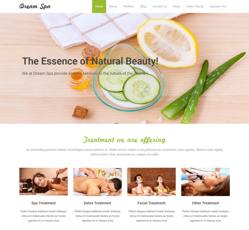 dream-spa-free-wordpress-theme-2