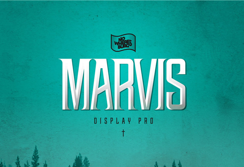 nwb-marvis-display-pro-2