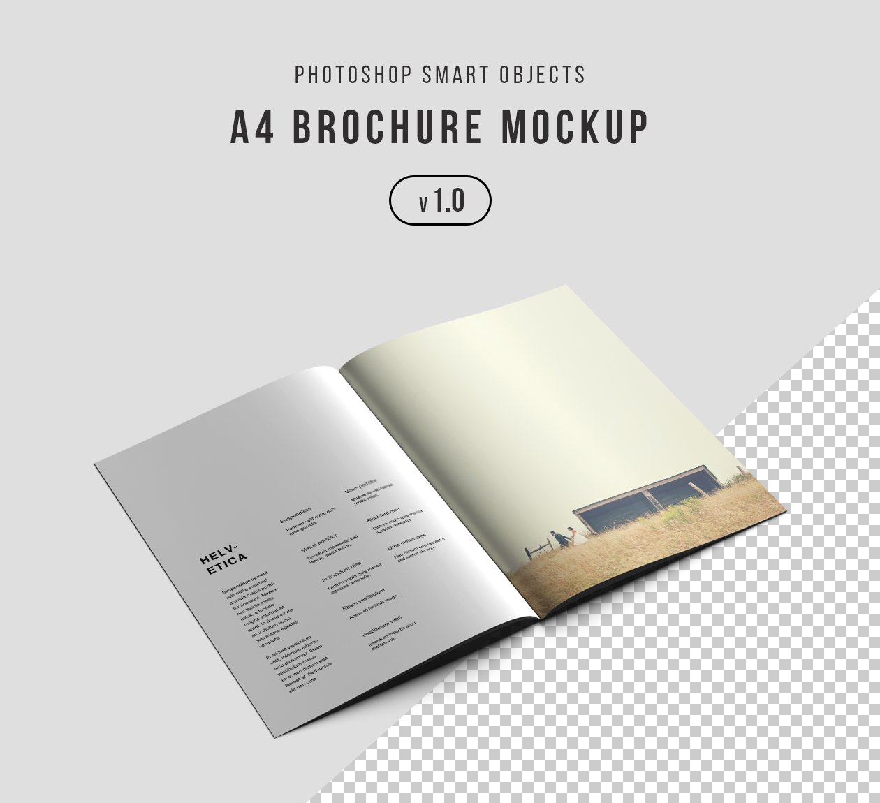 40 best catalog brochure psd mockup templates for Brochure photoshop templates