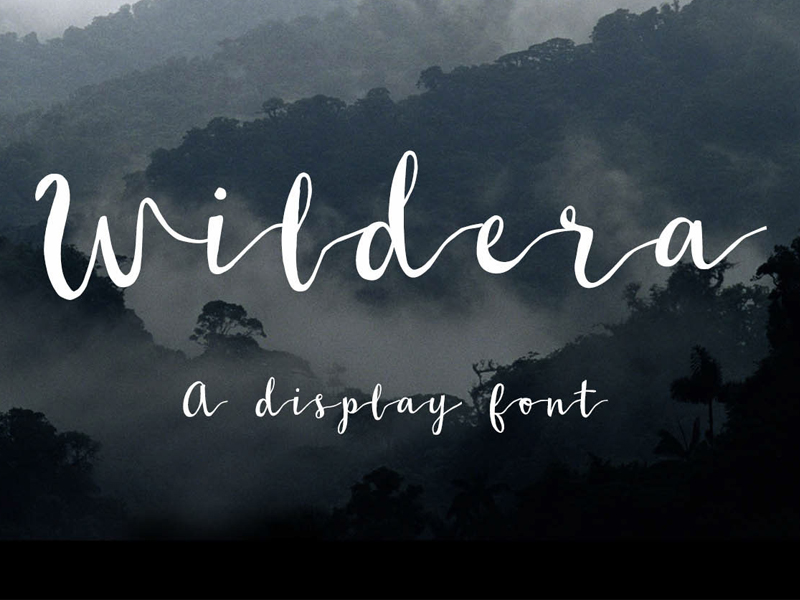 the-free-wildera-font