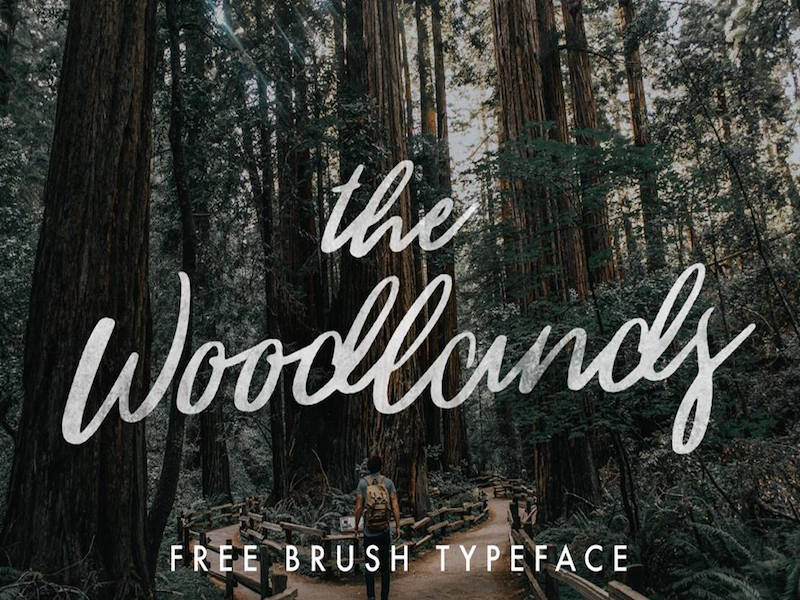 the-woodlands-free-brush-typeface