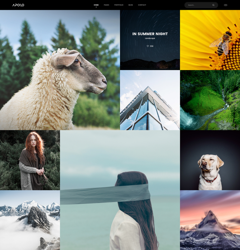 apolo-premium-photography-portfolio-psd-template-2