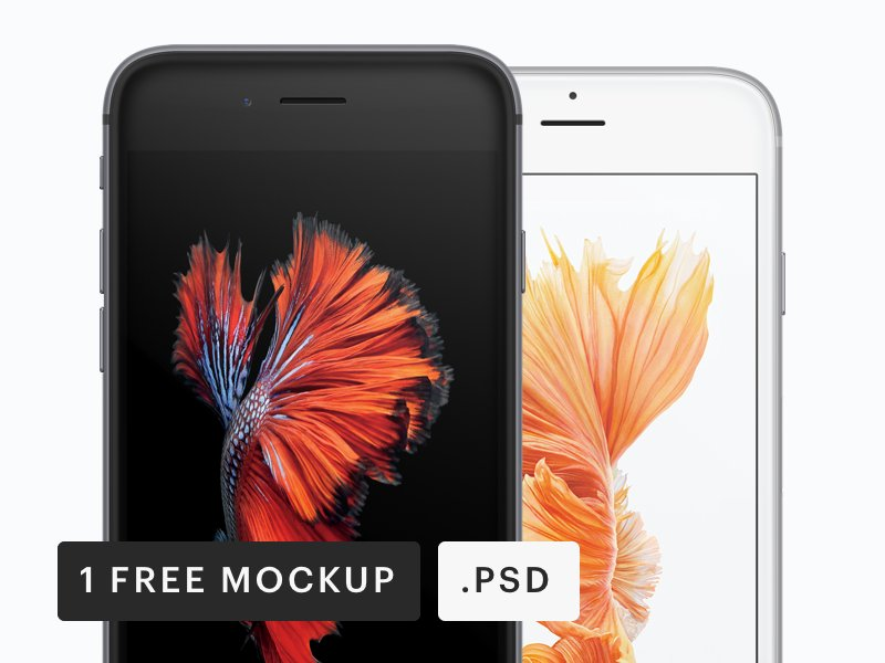 free-iphone-frontal-mockup-psd-2