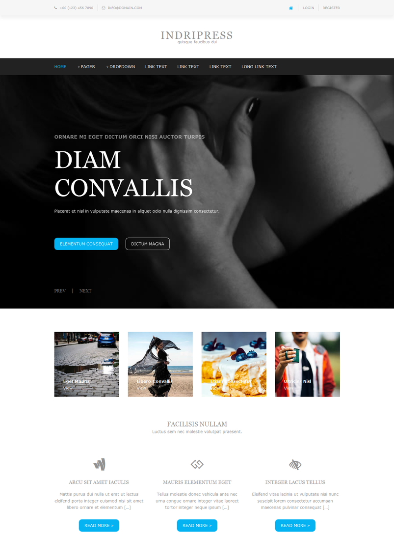 indripress-free-website-template-2
