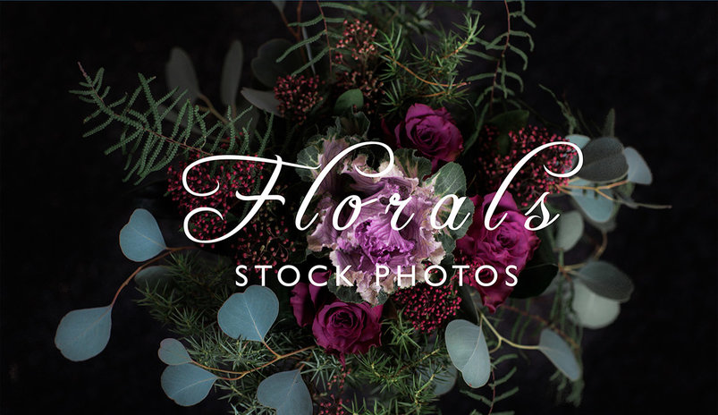moody-autumn-floral-stock-photos-6-2