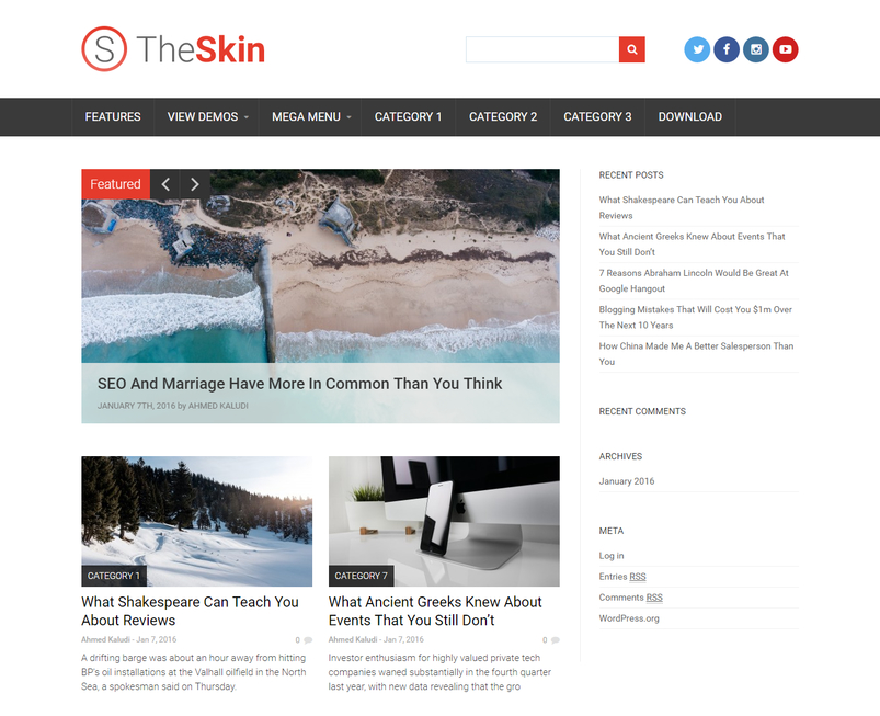 skin-free-wordpress-theme-2