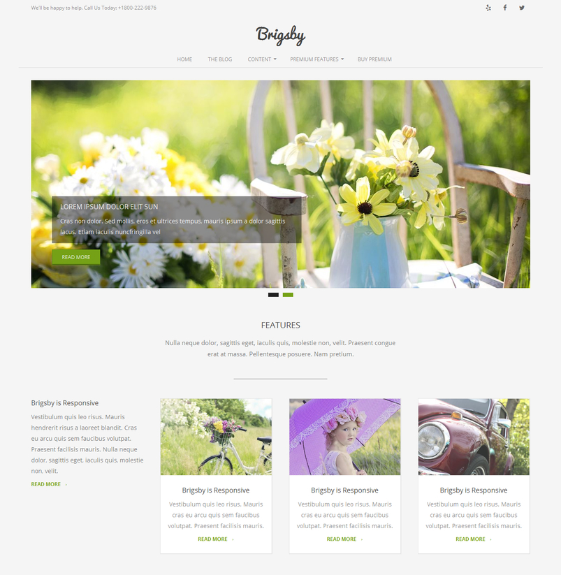 brigsby-free-wordpress-theme-2