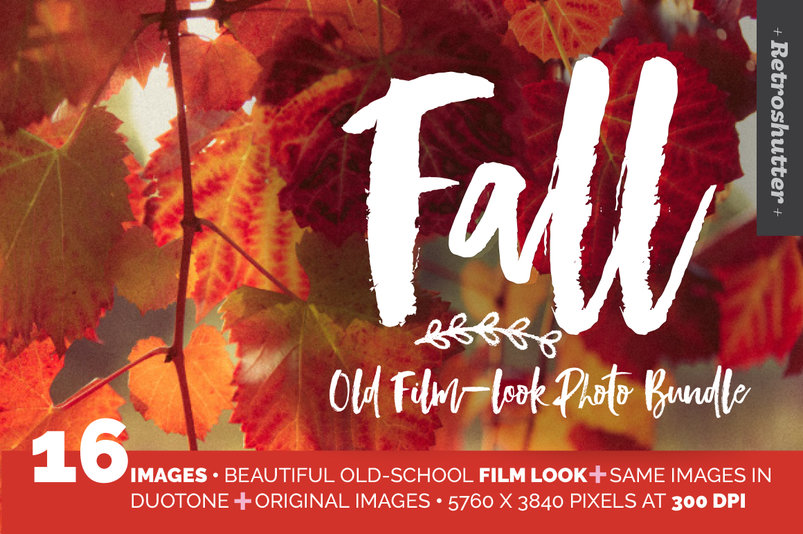fall-film-look-photo-bundle-2