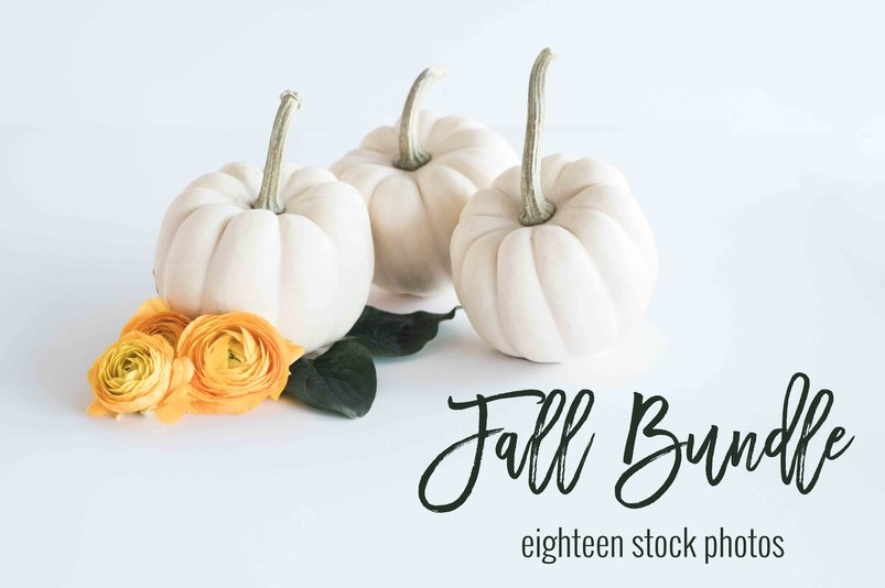 fall-stock-photo-bundle-2