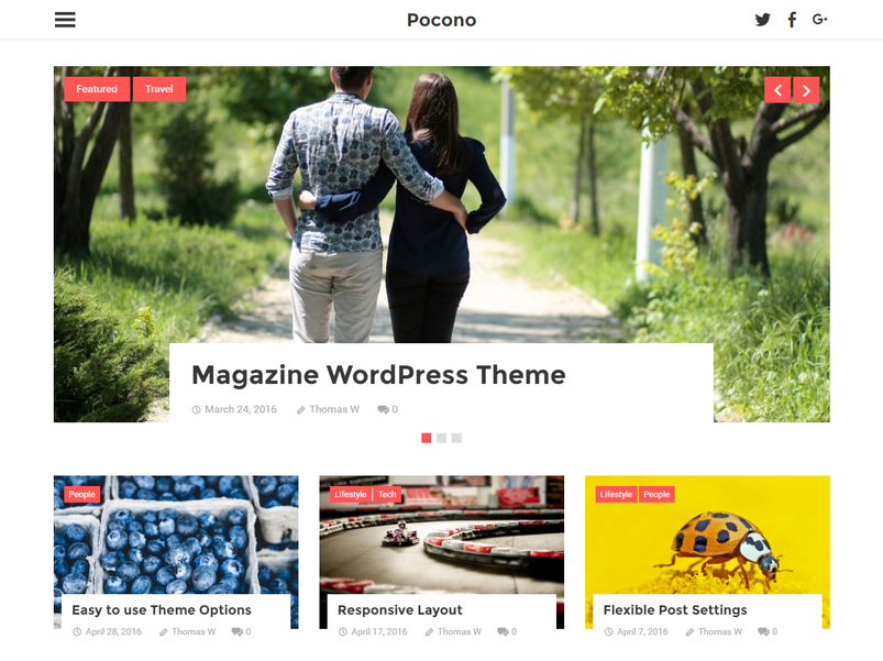 pocono-wordpress-theme-2